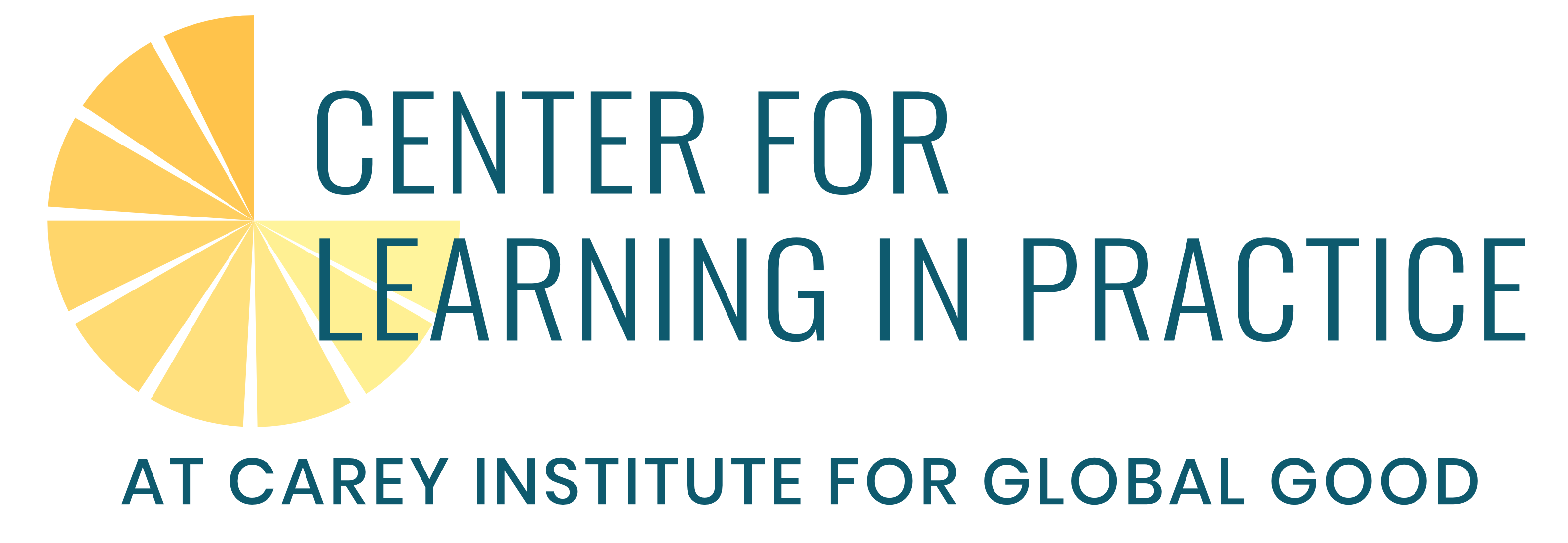 Center for Learning in Practice | Carey Institute for Global Good
